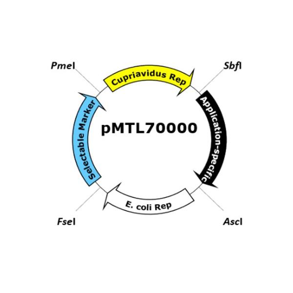 pMTL70000